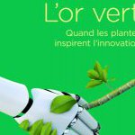 image Quand les plantes inspirent l'innovation